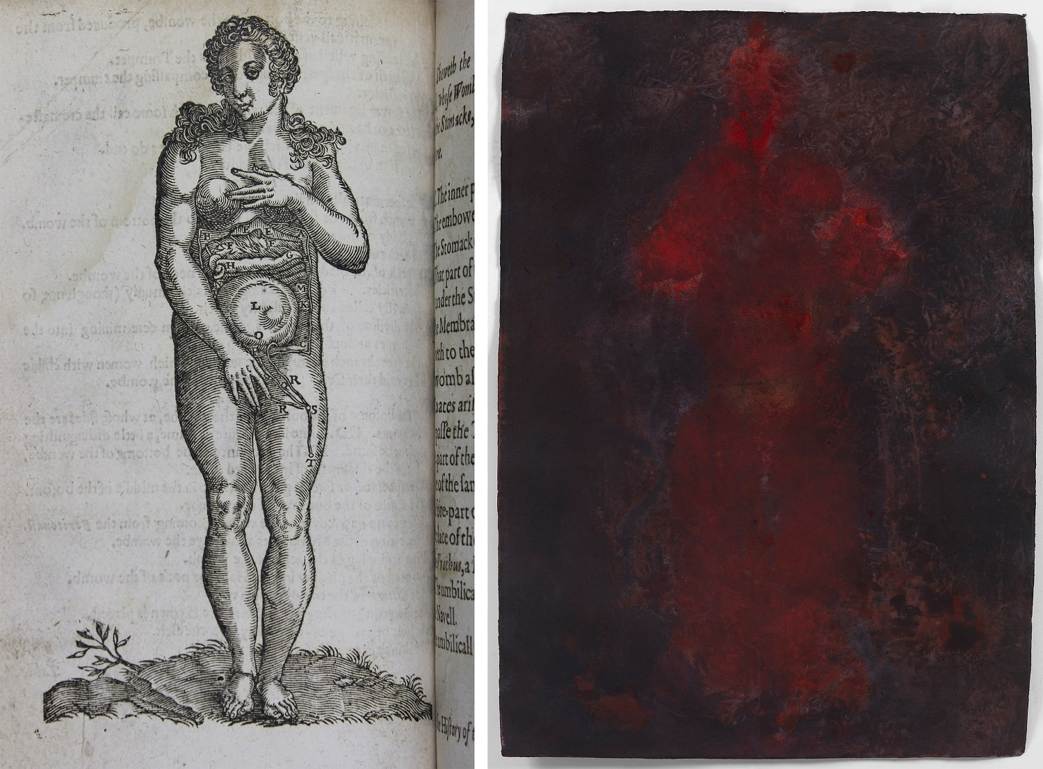 Print of a woman's anatomy showing abdomen and womb in late pregnancy on left. On right, life sized body print of a woman.