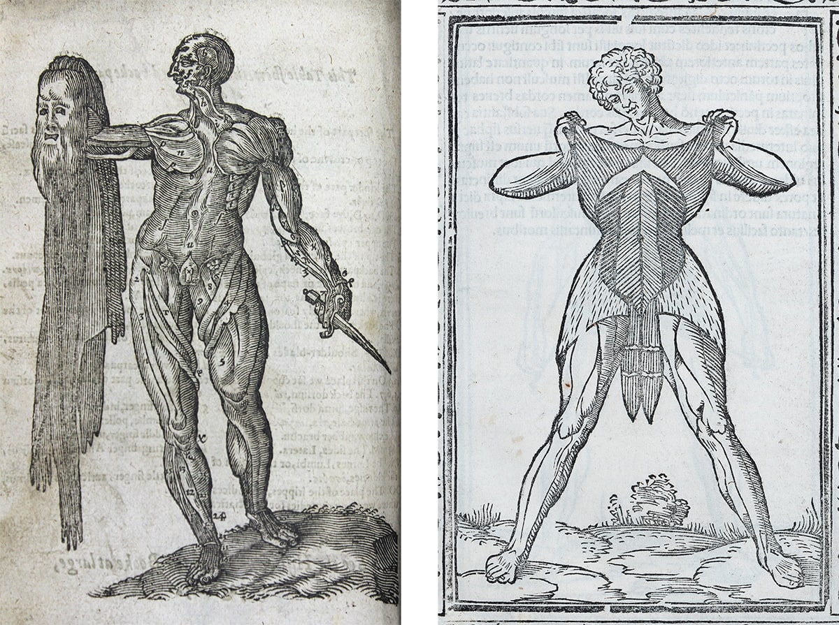 Two images. 1: Woodcut illustration in black ink showing a flayed man's body holding a sword in his left hand and a human skin with a face in his right hand. 2: Woodcut illustration in black ink of a man standing and holding back the skin of his own torso to reveal his muscles.