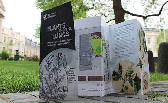 A folding leaflet reading 'Plants and the lungs'.