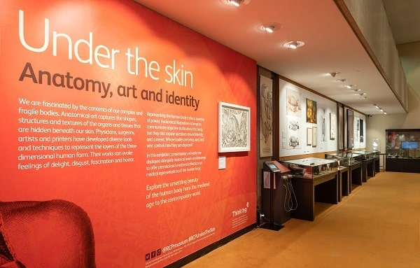 under the skin exhibition