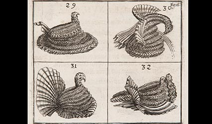 Engraved illustration showing napkins folded into different types of birds.
