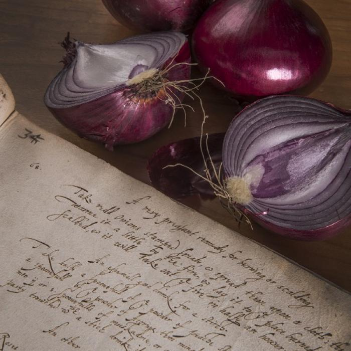 Recipe book with onions