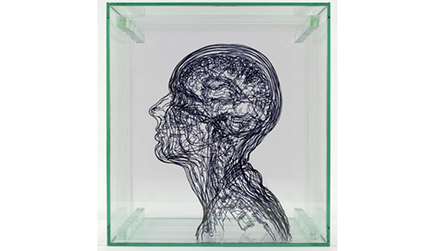 Representation of the human head, in layers of perspex with black lines drawn on them