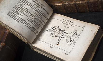 Photograph of a 17th century book open to an engraved illustration of how to carve a rabbit
