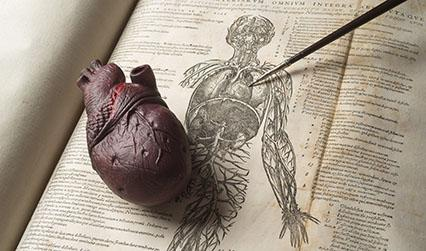 Photograph of a rare book and a model of a heart