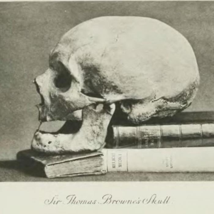 Sir Thomas Browne's skull