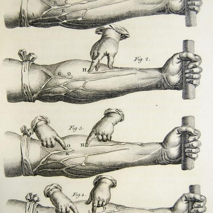 Illustrations of Harvey's experiments from De motu cordis, 1628.