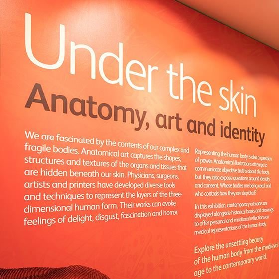 Text reading 'Under the skin: anatomy, art and identity' on a wall.