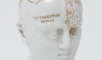 Phrenological head, early twentieth century